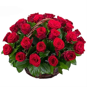 Basket of 51 Red Roses